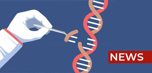 Alzheimer's gene news