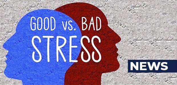 good n bad side of stress free life news