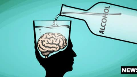 Brain Regions Responsible for Behavioral Effects Of Alcohol, Finds Study