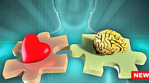 Heart-Focused Anxiety Increases Risk For Mental Health Disorders, Reveals Study
