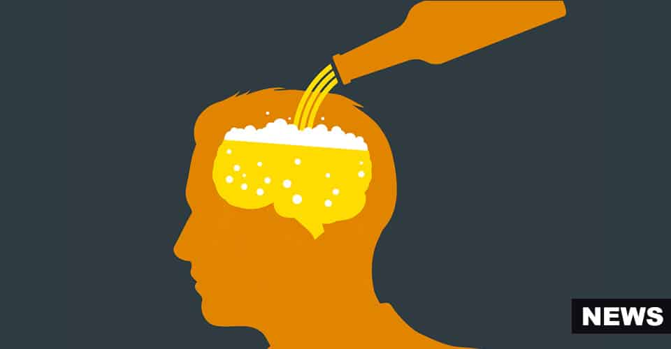 Alcohol Harms Your Brain From Birth To Death, Research Says