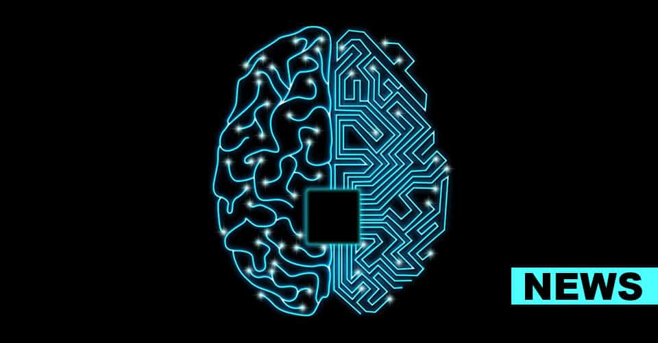 New Study Finds Brain Circuits Behind Mood And Anxiety Disorders