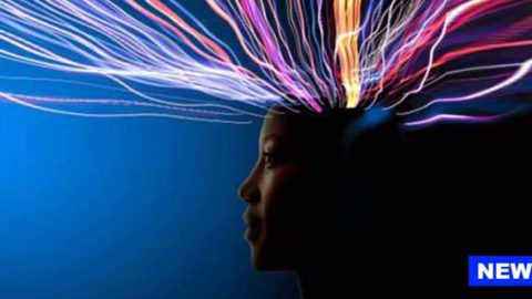 Think You're Totally In Control Of Your Thoughts? Scientist Says 'No'