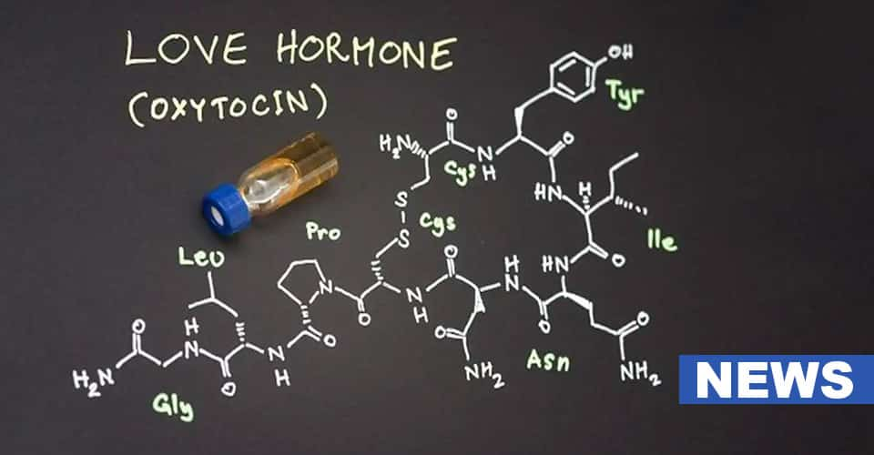 Love Hormone Can Reverse Stress Induced Digestive Issues