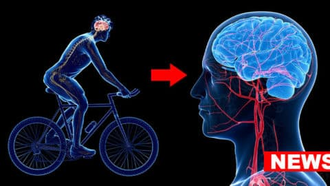 Scientists Confirm Dual Beneficial Effect Of Physical Activity In Depression