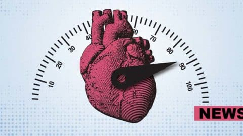 A Racing Heart Can Alter Your Decision-Making Ability, Scientists Find