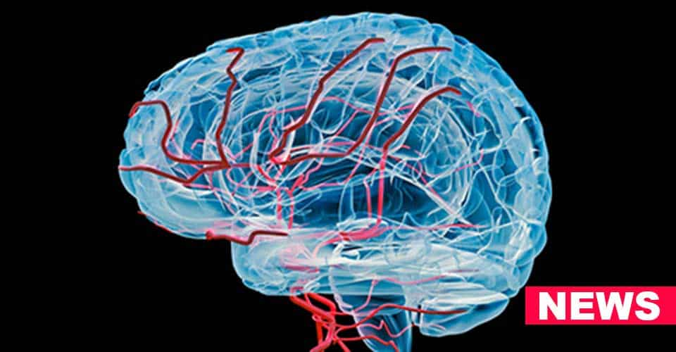 Signs of Dementia Written In The Blood